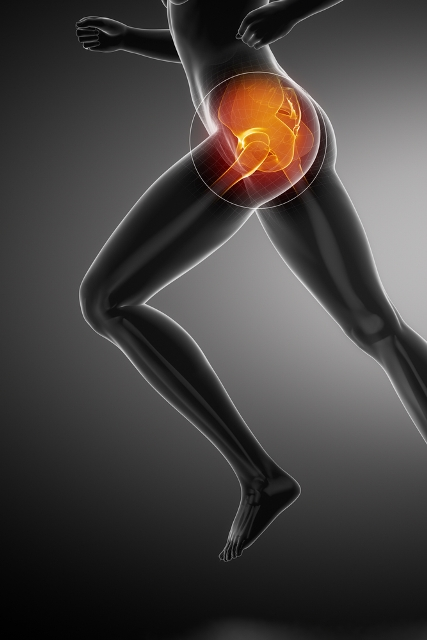 Hip Flail Joint